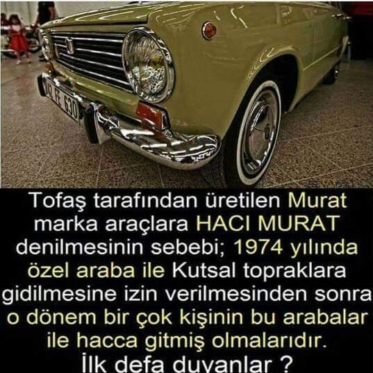 FB_IMG_1566304675578.jpg