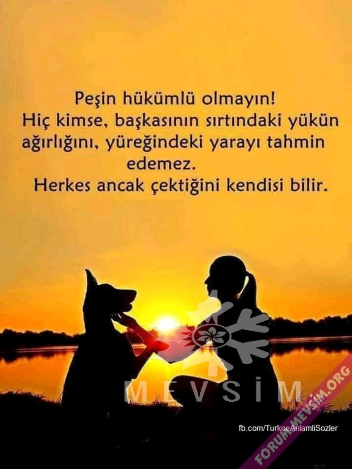 FB_IMG_15767794183440765.jpg