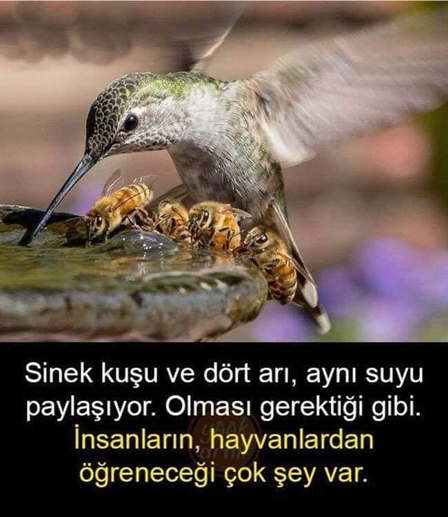FB_IMG_1580623849453.jpg